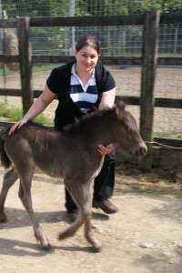 Kelly and Foal